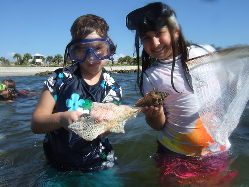 Beth and Zara find conchs