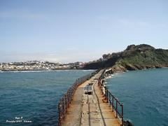 Ponte Procida - Vivara