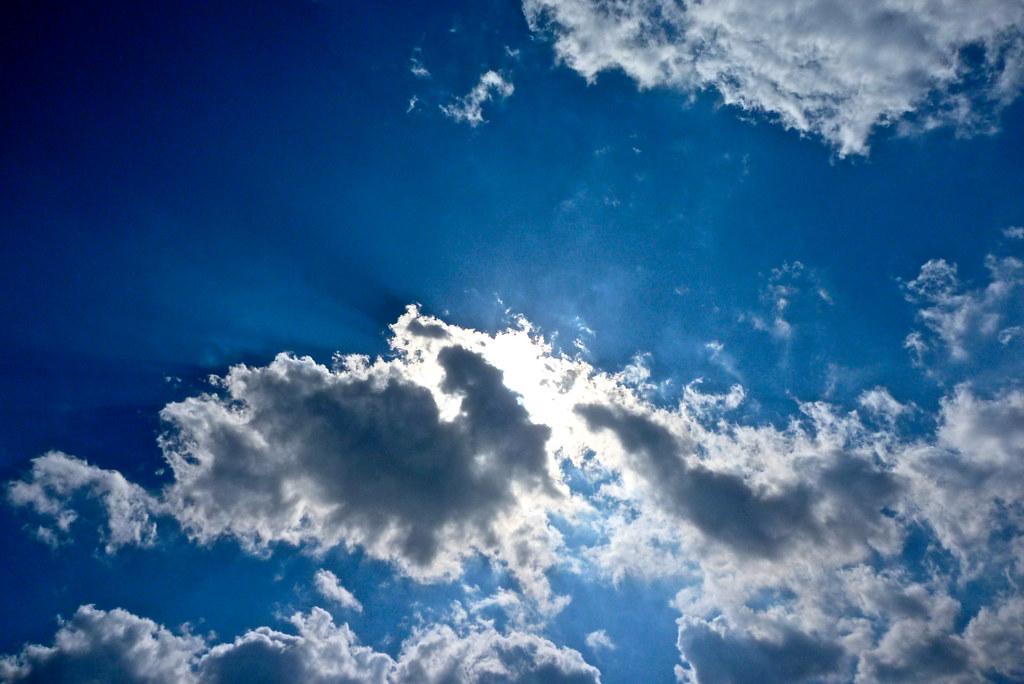 175/365: Sun Rays