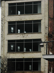 barren building (ILikeTakingDigitalPhotos) Tags: windows building streetphotography upstatenewyork albanynewyork urbanphotography