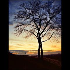 Kalemegdan sunset (Katarina 2353) Tags: blue sunset sky tree film nature clouds landscape photography nikon flickr image path serbia paisaje paysage priroda srbija kalemegdan tjkp pejza katarinastefanovic katarina2353
