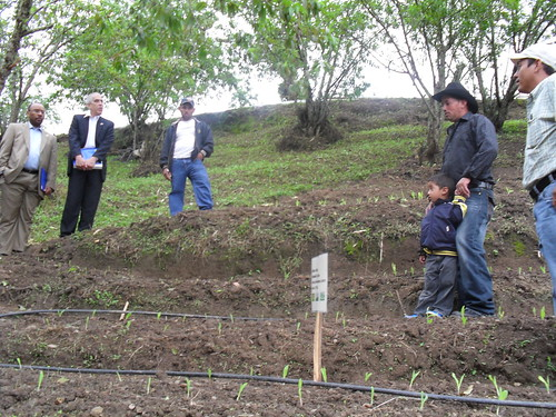 FAS Administrator John Brewer and FAS Agricultural Counselor Bob Hoff listen to producer Cesar Almendares explain how he is now using terraces to grow his products. Mr. Almendares said that with this new technique he is improving his harvest and taking care of the environment, since he is not causing erosion in the hillside.