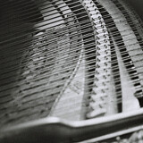 piano strings the knoll oadby Leicester University photography photo Mark Riley Cardwell Cardiff Journalism student