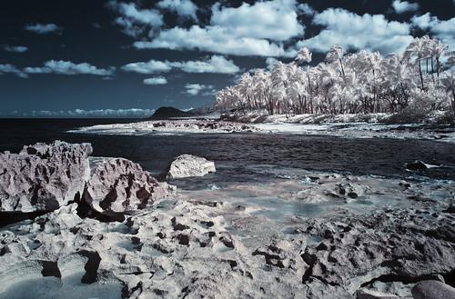 Paradise Cove - IR