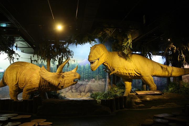 台北市立動物園台灣動物教育館0027