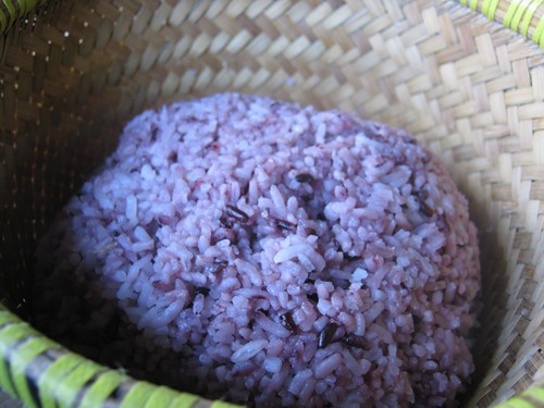 Nasi Hitam (Black Rice)