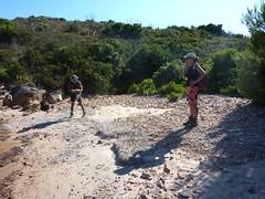 Capicciolu di I Volpi : plage d'A Tavonata