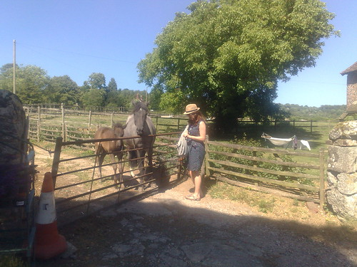 Vic and some lovely horses