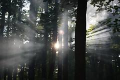 Sun & Smoke