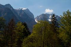 Mountains (Karmen Smolnikar) Tags: trees mountains alps nature slovenia slovenija kamnikalps