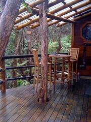 Treehouse  dining out