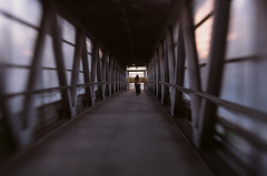 The lovely passage (Busiavka) Tags: film lensbaby fuji iii slide canont50 provia rdp fujiprovia rdpiii