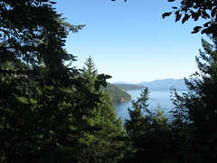 Saanich Inlet Viewpoint, Timberman Trail