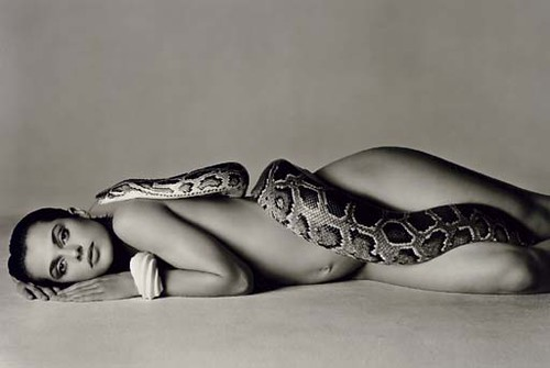 nastassja kinski python. nastassja kinski python. richard avedon nastassja kinski