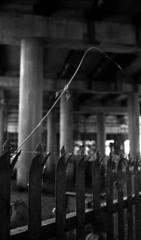 Ambition for greatness (richard314159) Tags: blackandwhite film rollei canon birmingham junction photograph spaghetti canonet giii xtol ql kodal retro100 richard314159