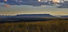 Shades Of Gold (Trish(52)) Tags: sunset mountains montana butte trish greatfalls prairie trishmccoy