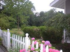 Gabi and Phil house, NJ