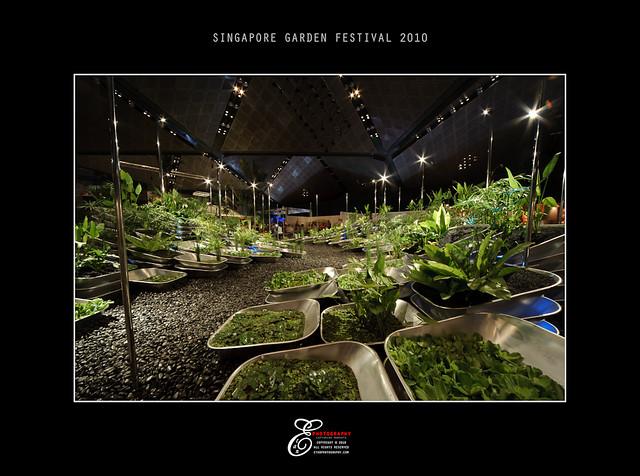Singapore Garden Festival - 016