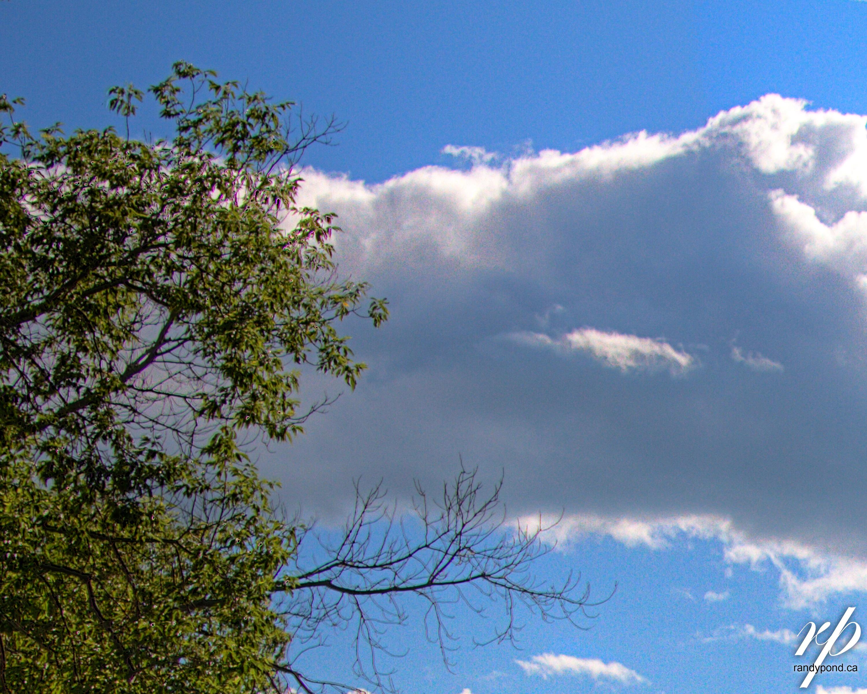 ~ 198/385 Clouds ~