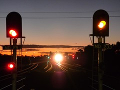 evening at Maitland (sth475) Tags: railroad autumn sky train lights evening dusk railway australia stop caution nsw infrastructure headlight signal goldenhour huntervalley maitland indication singlelight colourlight