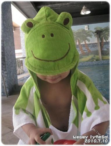 100710-小青蛙-2