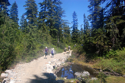 Vancouver - Cypress Mountain, Eagle Bluffs Hike (39)