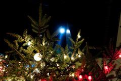 DSC_5856.jpg (ntstnori) Tags: tokyo ginza decoration christmastree  chuo xmastree mikimoto jewelrystore