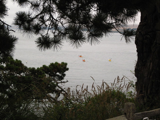 bay kayakers