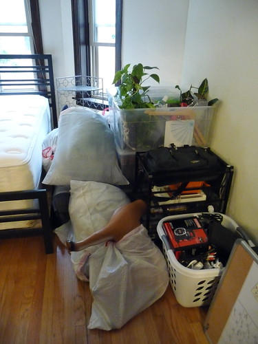 moving day...