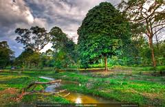 hulu-langat-orchard-small-river-hdr-photography