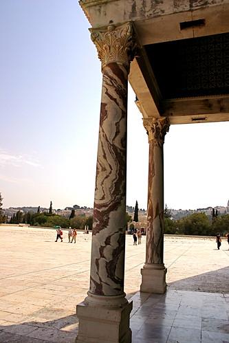 Wild marble columns
