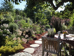 Sitting Area and Perennial Border
