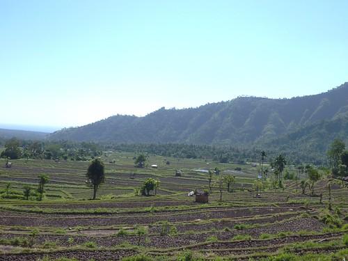 Bali-Tirtagangga (25)