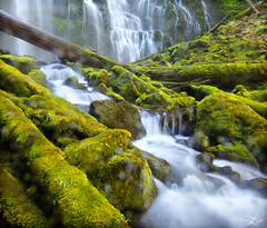 Waterlogged (Laura A Knauth) Tags: longexposure laura green nature water oregon river landscape photography waterfall moss northwest logs motionblur waterfalls proxy proxyfalls bej mywinners platinumheartaward knauth ubej lauraknauth lyteray