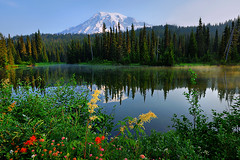 Mt. Rainier (Deby Dixon) Tags: trees mountain lake snow reflection tourism nature landscape photography nikon scenic glacier wildflowers mtrainier deby allrightsreserved mtrainiernationalpark reflectionlakes debydixonphotography