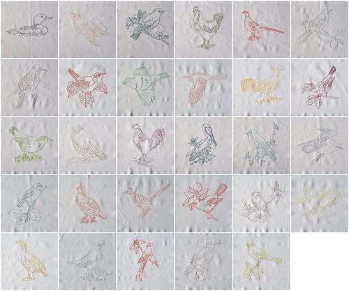 All 29 Birds
