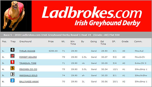 Fenomen Co Co beim Irish Greyhound Derby weiter!