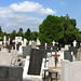 The cemetery at Gardos