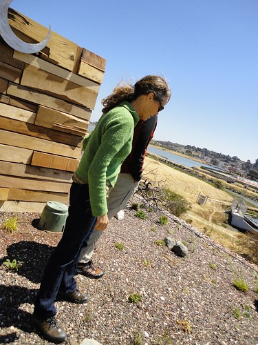 Eco Center, Heron's Park, San Francisco