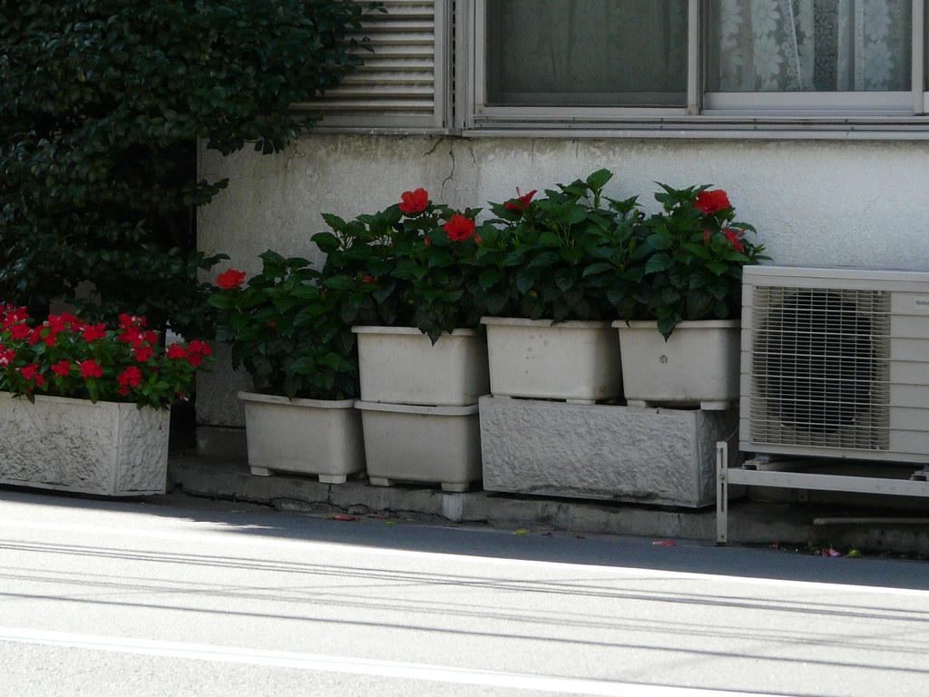 Simple Planter Tiered Garden