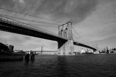 (photomagister) Tags: nyc newyorkcity tokina d90  nikond90 tokina1116mmf28 1116mmf28