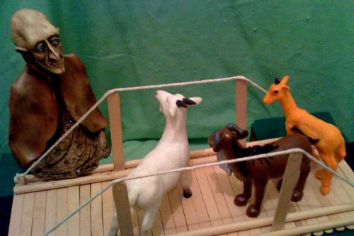 Billy goats