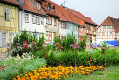 Quedlinburg (Habub3) Tags: road park street city travel flowers houses roof vacation holiday plant green window colors beautiful architecture buildings germany garden deutschland photo interestingness nice interesting flora nikon holidays europe downtown village blossom map urlaub blumen historic unesco explore stadt architektur altstadt oldtown frontpage garten hdr harz halftimbered fassade reise worldheritage farben 2010 weltkulturerbe tagetes fachwerk d300 quedlinburg unescowelterbe sachsenanhalt strase facede abigfave qlb theunforgettablepictures habub3