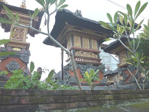 Bali-Ubud (115)