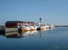 Norway 2010 - 04 003