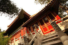 Imperial Gardens 37 (David OMalley) Tags: china city red beauty architecture capital chinese beijing palace forbidden empire imperial  forbiddencity dynasty emperor  grandeur  verbotenestadt citinterdite    verbodenstad cidadeproibida cittproibita yasakehir chineseempire    ipinagbabawalnalungsod cmthnhph