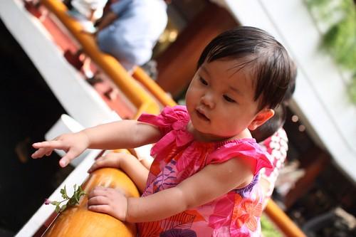 Photo 5 - 2010-08-21