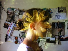 (eemilyclairee) Tags: flower profile overlay daisy eemilyclairee
