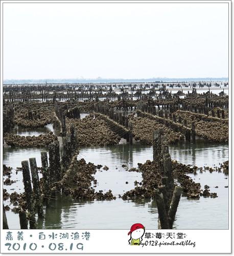 白水湖漁港29-2010.08.19