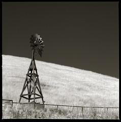 Windmill (efo) Tags: california bw windmill pump hillside livermore trix400 hasselblad500cm d7611 autaut